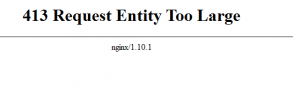 Nginx 413 Request Entity Too Large